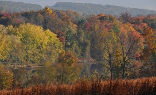marsh_creek_state_park_fall_colors_3_BLOG