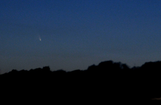 comet_pan-STARRS_BLOG