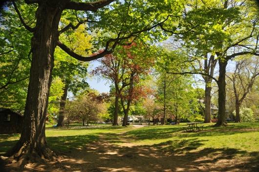 marshall_square_park_spring_BLOG