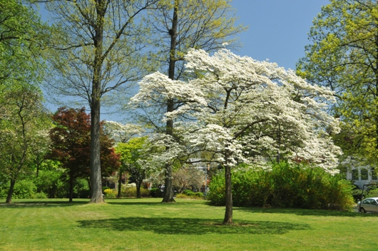 the_barclay_grounds_west_chester_pa_BLOG