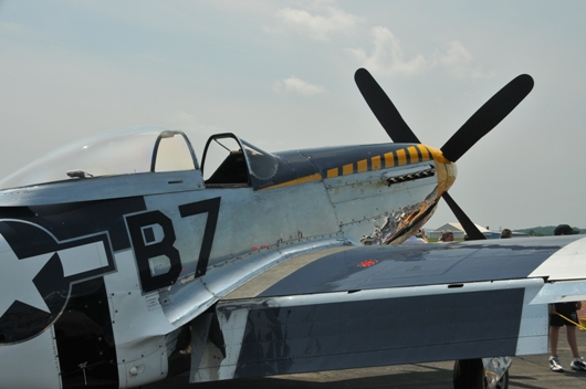 p-51_mustang_bald eagle_BLOG