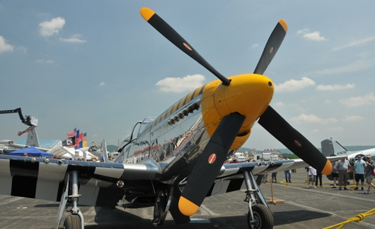 p-51_mustang_bald_eagle_prop_BLOG