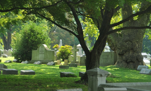 west_laural_hill_cemetery_landscape_BLOG