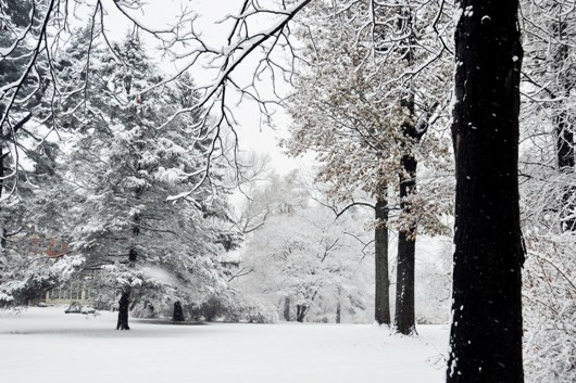 barclay_snow_3_bri_BLOG