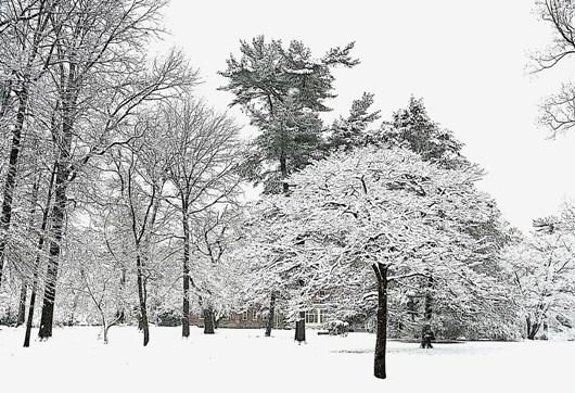 barclay_snow_aps_persp_bri_2_BLOG