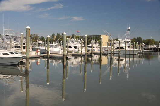 cape_may_harbor_3_blog